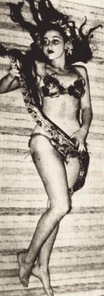 Luz del Fuego e uma de suas serpentes em fotografia publicada na revista Carioca, em 1944. Já àquele ano, a artista era conhecida por Luz del Fuego, o que contradiz a informação de que ela apenas adotara tal pseudônimo em 1947.